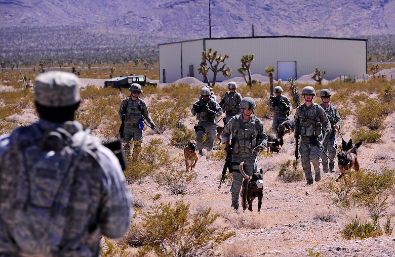 NEVADA TEST AND TRAINING RANGE, Nev.-- Military working dogs and their handlers assigned to the 99th Ground Combat Training Squadron make their way to a rally point after disembarking from an HH-60 Pave Hawk helicopter to conduct pre-deployment training outside of Las Vegas June 14, 2013.  Military working dogs and their handlers attend specific training at Silver Flag Alpha prior to attending the Base Security Operations Course, which ensures MWD teams are exposed to current enemy tactics, techniques and procedures and that they are certified on all aspects of their specialized role within the Integrated Defense Operations. (U.S. Air Force photo by Staff Sgt. D.H./Released)
