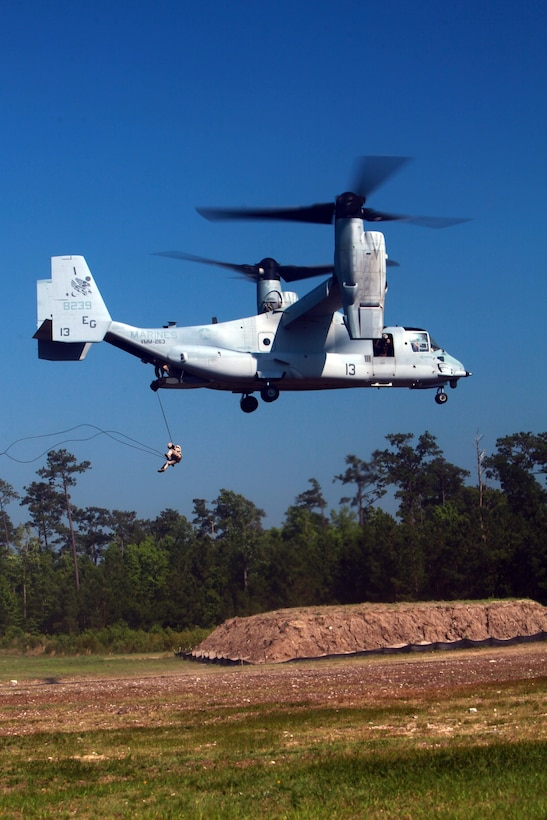 A Marine with Special Operations Training Group conducts helicopter rope suspension training from an MV-22B Osprey with Marine Medium Tiltrotor Squadron 263 June 13 at Landing Zone Vulture aboard Camp Lejeune.