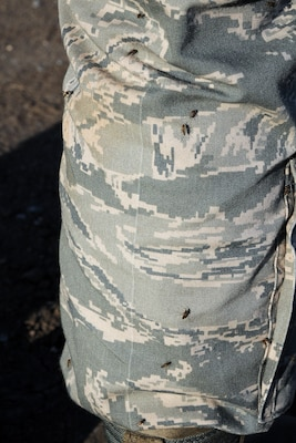 130615-F-MJ178-001 Joint Base Charleston – Weapons Station, S.C. – Numerous saltwater marsh mosquito cover the leg of an individual's Airman Battle Uniform near an area known as the spoils site here, June 15, 2013. Only female mosquitoes bite and once they are full, they lay their eggs, multiplying the number of mosquitos in the area. The 30-acre spoils site is known to produce approximately 40-million mosquitoes per acre, or 1.2 billion of the pest insects, annually. The Air Force Reserve's 910th Airlift Wing Aerial Spray Unit, based at Youngstown Air Reserve Station Ohio, conducted spraying operations here, June 15, 2013 to control the population of the disease-carrying pest insects at the installation. The 910th's 757th Airlift Squadron is home to the Department of Defense's only large-area, fixed-wing aerial spray capability. U.S. Air Force photo by Tech. Sgt. Rick Lisum.