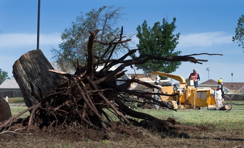 U.S. Air Force Airmen from the 7th Civil Engineer Squadron (CES) dispose of an uprooted tree after a storm subsided June 18, 2013, at Dyess Air Force Base, Texas. Due to the storm, there was loss of power to the base, downed trees, roof damage and broken windows. Repairs were quickly made by multiple 7th CES shops to include pavements and equipment, structures, water and fuel systems maintenance, electric, power production and heating, ventilation and air conditioning. (U.S. Air Force photo by Senior Airman Jonathan Stefanko/Released)