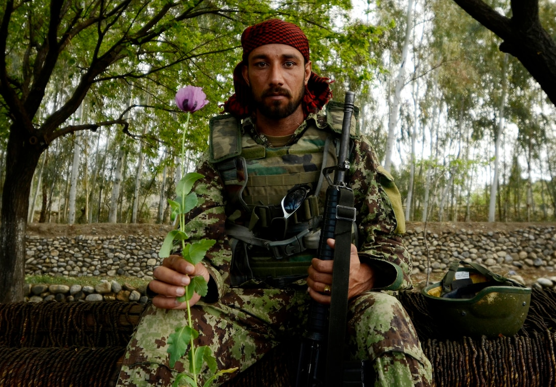 An Afghan National Army soldier poses with a poppy near the village of Karizonah, Afghanistan. The poppy crop is a major source of funding for extremist groups involved in the Taliban-led insurgency in Afghanistan. (U.S. Air Force photo/Staff Sgt. Joshua L. DeMotts)
