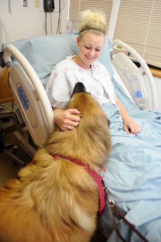 Woman petting a dog while she sits in a hospital bed