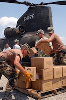 PICAYUNE, Miss.  -- Army National Guard soldiers unload meals ready to eat off a CH-47 Chinook helicopter at a supply distribution point. (photo by Spc. Joshua M. Risner)