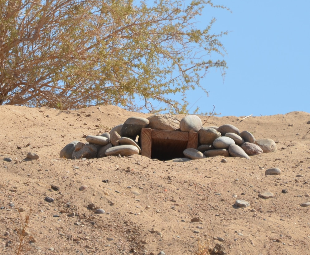 Photo of completed artificial wood and rock burrowing owl habitat.