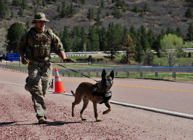 Senior Airman Joshua Carabajal, 460th Security Forces Squadron military working dog handler, competes in the Iron Dog Competition May 16, 2013, at the U.S. Air Force Academy, Colo. The competition was set up to honor all of the fallen K-9 handlers and their dogs. Dog handlers ran in battle rattle while conquering obstacles such as medical care for canine companion, tactical movement and dummy drags. (U.S. Air Force photo by Airman 1st Class Darryl Bolden Jr./Released)