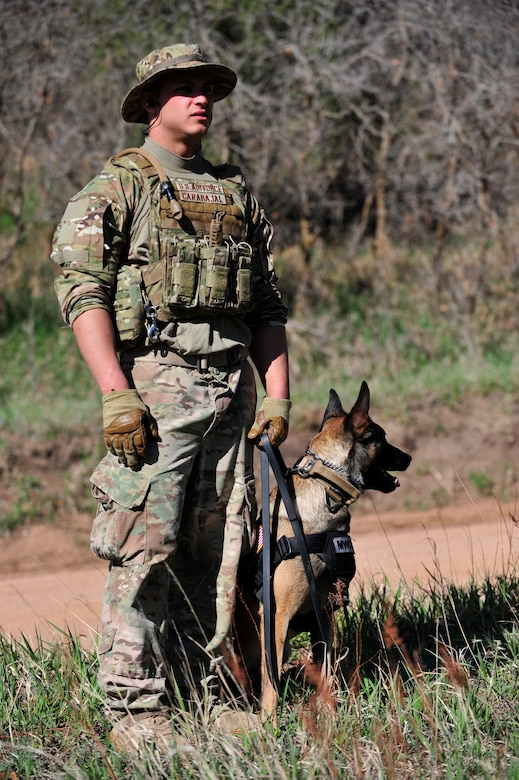 Senior Airman Joshua Carabajal, 460th Security Forces Squadron military working dog handler, and his canine, Arie, focus for their before the Iron Dog Competition May 16, 2013, at the U.S. Air Force Academy, Colo. Carabajal and Arie have been working as a team for more than a year. Many dog handlers and their canines completed several obstacles and task on their way to the finish line. The five-mile obstacle course consisted of running up and down steep hills and accomplishing real world scenarios. (U.S. Air Force photo by Airman 1st Class Darryl Bolden Jr./Released)