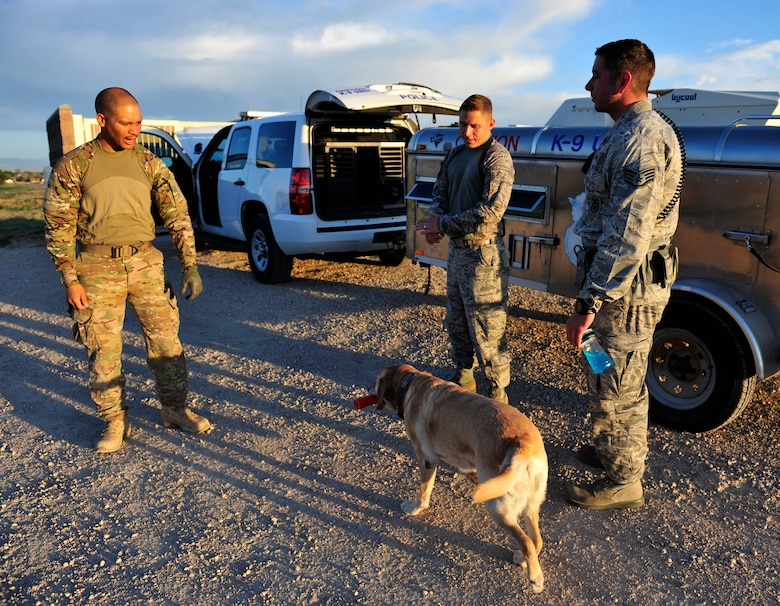 Staff Sgt. Marque Daniels, left, Staff Sgt Joshua Reid, middle and Staff Sgt Michael Clark, 460th Security Forces Squadron military working dog handlers, discuss and prepare for the upcoming Iron Dog Competition May 16, 2013, at the U.S. Air Force Academy, Colo. Several K-9 handlers from the Academy, Peterson Air Force Base, Colo., Buckley AFB, Colo., and F. E. Warren Air Force Base, Wyo. participated in the competition.  (U.S. Air Force photo by Airman 1st Class Darryl Bolden Jr./Released)