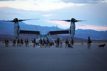 U.S. Marines and Sailors cross the runway after landing MV-22 Osprey helicopters at St. George Airport, May 9, 2013.  Once landed, Marines and Sailors established a forward refueling point (FRP) to resupply military aircraft with necessary fuel and equipment to conduct ground realistic urban training at a forward location. This training exercise is in preparation for the 13th MEU's upcoming WESTPAC 13-2 deployment.