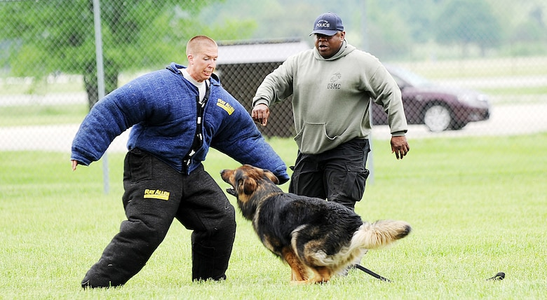 """Staff Sgt. Bryan Dell, 375th Security Forces squadron, military working dog trainer, wears a bite suit during the K-9 competition held May 17th at Scott Air Force Base. The bite suit helps protect handlers and trainers while training the dogs on controlled aggression. Controlled aggression or """"biting the bad guy"""" has handler use the K-9 as intimidation and if the """"suspect"""" runs the handler releases the K-9 to try to stop them.  (U.S. Air Force photo/ Senior Airman Tristin English)"""