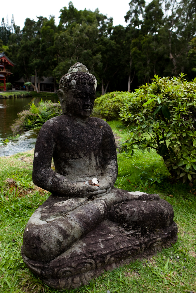 charles mix county buddhist singles South dakota: bibles  charles mix county (184  this search engine lets you search up to 2,648,502 pages of free genealogical data with a single query.