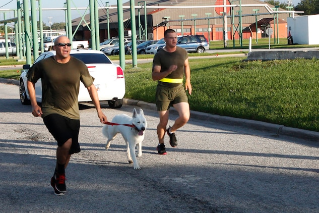 Participants in the 2nd Quarterly Road Race run towards the finish line aboard Marine Corps Recruit Depot Parris Island, May 22. MCCS has been hosting the Quarterly Road Races for over 14 years in support of service members and civilians aboard the Air Station and Parris Island.