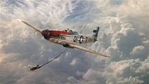 """A U.S. Army Air Corps P-51D Mustang """"Jersey Jerk"""" flown by Maj. Donald J. Strait from the 361st Fighter Squadron, 356th Fighter Group scores a victory against a Luftwaffe Me 109 on Nov. 26, 1944 while escorting bombers over Ruhr.  That day the 356th Fighter Group destroyed 23 enemy aircraft without losing a single American.  Strait began his career as an enlisted Airman in the 119th Observation Squadron, New Jersey Army National Guard, and by the end of World War II he had 13.5 aerial victories.  (U.S. Air National Guard illustration by Tech. Sgt. Matt Hecht)"""