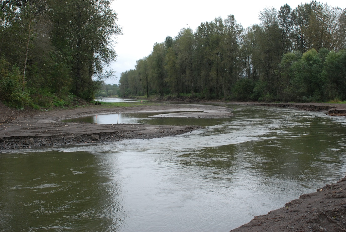 Sandy River Delta dam removal a success