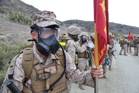 Lance Cpl. Tyler Farnsworth, a towed artillery systems technician with Maintenance Detachment, Combat Logistics Battalion 15, Combat Logistics Regiment 17, 1st Marine Logistics Group, holds his detachment's guidon during a battalion hike aboard Camp Pendleton, Calif., Sept. 25, 2013. During the hike, Marines were faced with a mock chemical weapon attack and donned their M40 gas masks while evacuating simulated casualties.