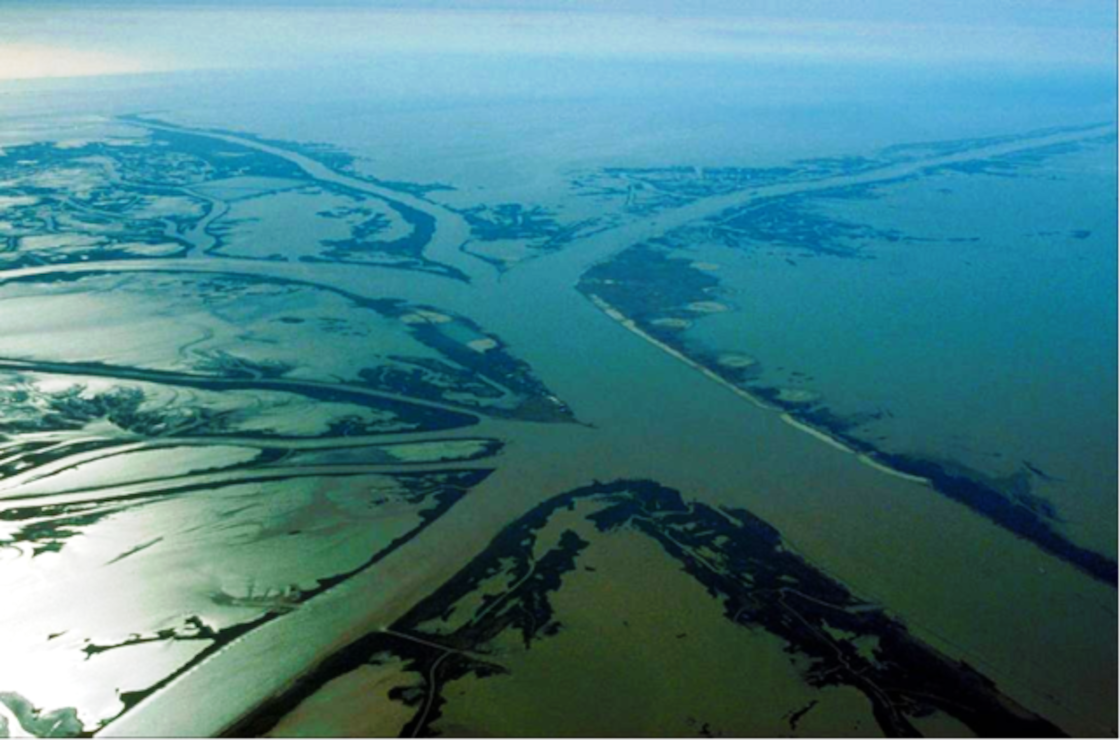 "The Bird's Foot is the main stem of the Mississippi River branches off into three distinct directions at its mouth in the Gulf of Mexico: Southwest Pass (west), Pass A Loutre (east) and South Pass (centre). They are part of the ""Bird's Foot Delta"", the youngest lobe of the evolving Mississippi River Delta."