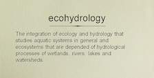 Definition of Echohydrology