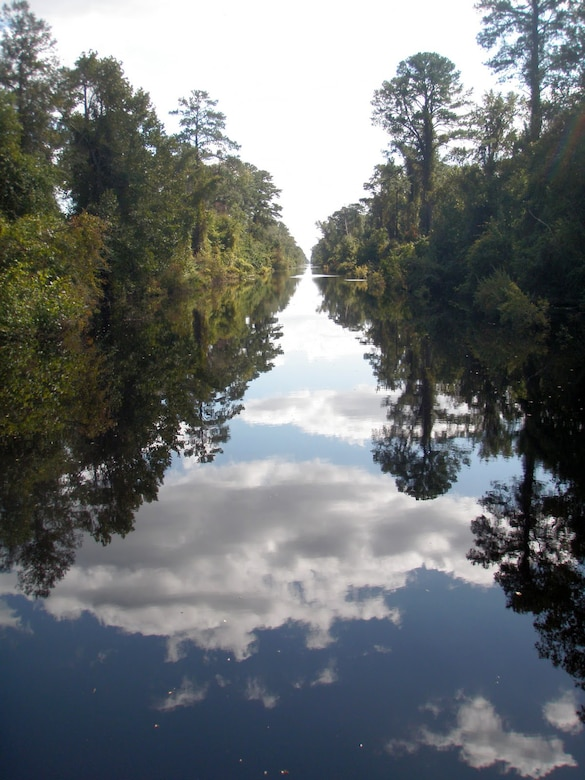 A scenic view of the Dismal Swamp, or Atlantic Intracoastal Waterway in Virginia.