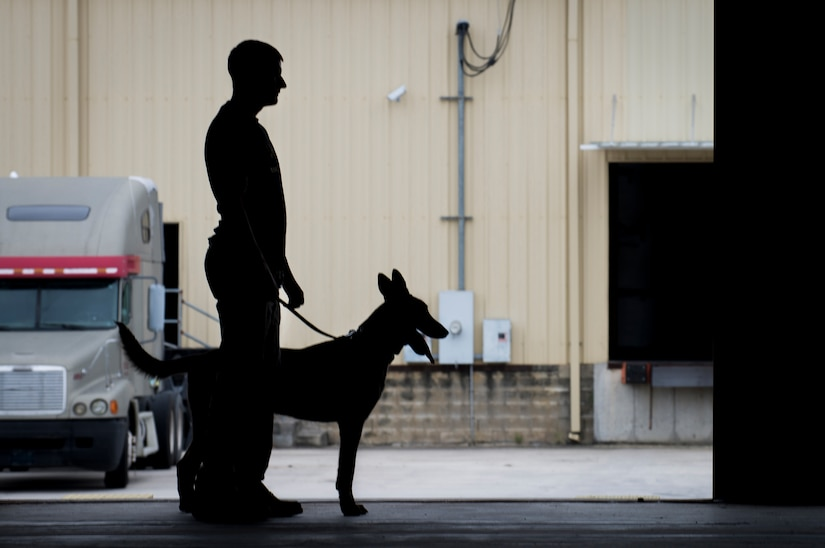 Staff Sgt. Craig Martin, 628th Security Forces K'9 handler, and his dog, Chico, stand inside a warehouse October 22, 2013 after taking part in Explosives detection training in Summerville, S.C. During this training, the dogs undergo obstacles where they searched through blocks or warehouse equipment for substances that are and may be used by terrorists or criminals. (U.S. Air Force/Senior Airman Ashlee Galloway)
