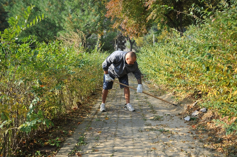 Master Sgt. Bradford Cambra, 51st Communications Squadron first sergeant, rakes under hedges at Mustang Valley Park at Osan Air Base, Republic of Korea, Oct. 26, 2013. The Osan Top III council, 51st Civil Engineer Squadron, and Osan Boy Scout Troop 86 with Webelos II scouts teamed up for this volunteer project for the community's benefit. (U.S. Air Force photo/Staff Sgt. Emerson Nuñez)