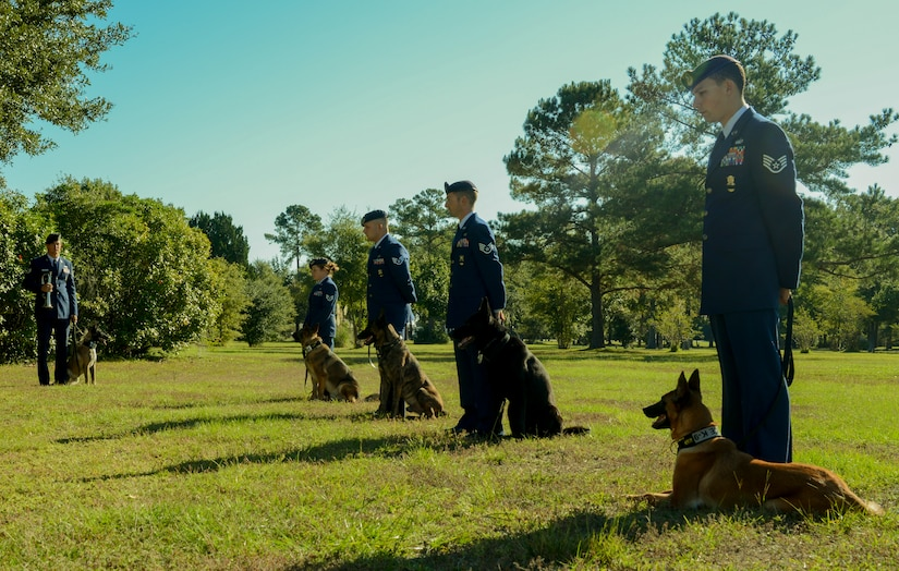 The 628th Security Forces Squadron Airmen hold a burial ceremony for military working dog Athos on Oct. 24, 2013, at Joint Base Charleston – Air Base, S.C. Athos was born Aug. 1998 and passed away Oct. 2012. Athos served as an explosive detector dog for 11 years. He was returned to JB Charleston where his ashes were buried alongside his fellow military working dogs. (U.S. Air Force photo/ Airman 1st Class Chacarra Neal)
