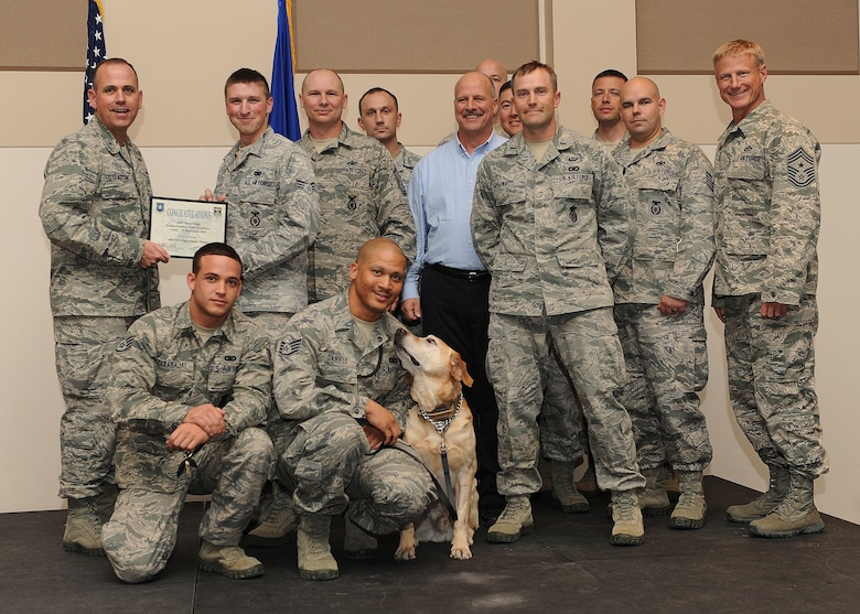 460th Security Forces Squadron S3 Operation Team receives the Golden Panther Team Excellence Award during the Quarterly 460th Space Wing and Team Buckley Awards Oct. 30, 2013, at the Leadership Development Center on Buckley Air Force Base, Colo. (U.S. Air Force photo by Senior Airman Marcy Copeland/Released)