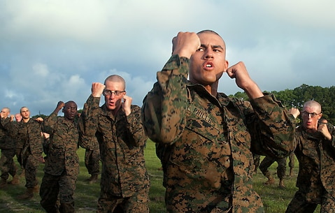Rct. Kenneth Phillips, 20, Platoon 2057, Fox Company, 2nd Recruit Training Battalion, practices martial arts strikes during a warm-up before a Marine Corps Martial Arts Program endurance course June 20, 2013, on Parris Island, S.C. Drill instructors remediated recruits on martial arts techniques they would use on the course. MCMAP is used to help produce better physically and morally strong Marines. Phillips is from Montgomery, Ala., and is scheduled to graduate Aug. 2, 2013. Approximately 20,000 recruits come to Parris Island annually for the chance to become United States Marines by enduring 13 weeks of rigorous, transformative training. Parris Island is home to entry-level enlisted training for 50 percent of males and 100 percent of for females in the Marine Corps. (Photo by Lance Cpl. David Bessey)