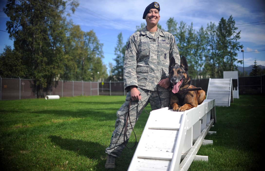 Air Force Staff Sgt. Stacy Glass, assigned to the 673d Air Base Wing Security Forces Squadron, a native of Pittsburgh, Penn., poses with Chase, her military working dog, on Joint Base Elmendorf-Richardson, Aug. 26, 2013. Security Forces Airmen continually train with their K9 counterparts to keep their teams flexible to respond to law enforcement emergencies, and for overseas deployments. (U.S. Air Force photo by Justin Connaher/Released)