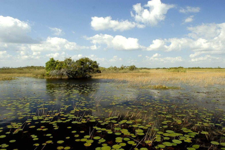 The Arthur R. Marshall Loxahatchee National Wildlife Refuge