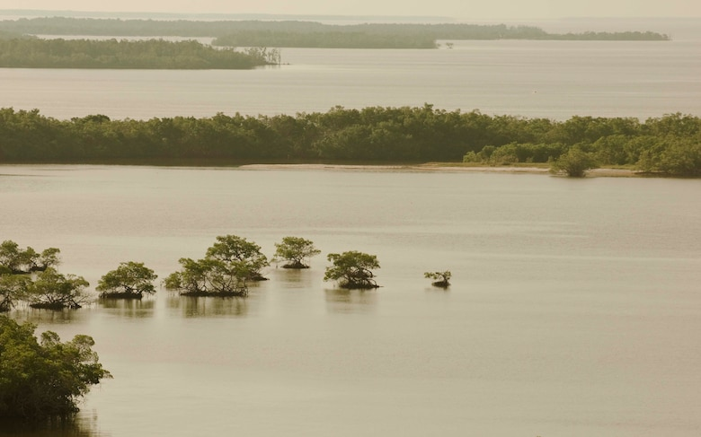 Florida Bay mangrove islands near Fakahatchee Pass