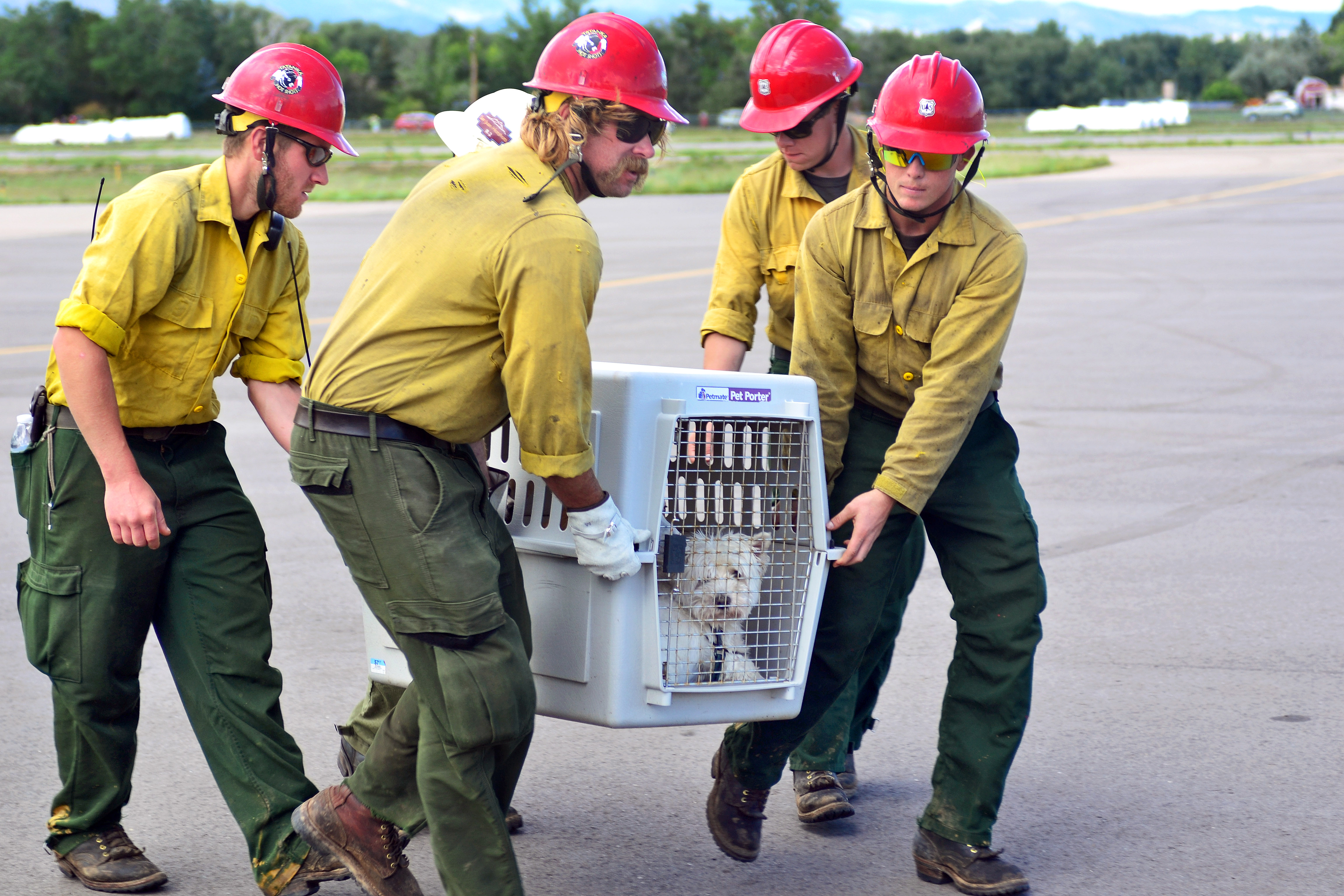 National Forest Service And Bureau Of Land Management Members Help Unload Animals And Evacuees Off A