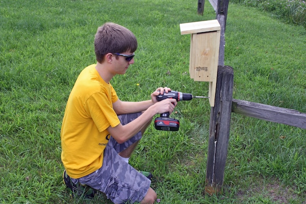 Life Scout Pierce Miller installs one of 30 bluebird boxes as part of his final Eagle Scout project at Jennings Randolph Lake, July 17.