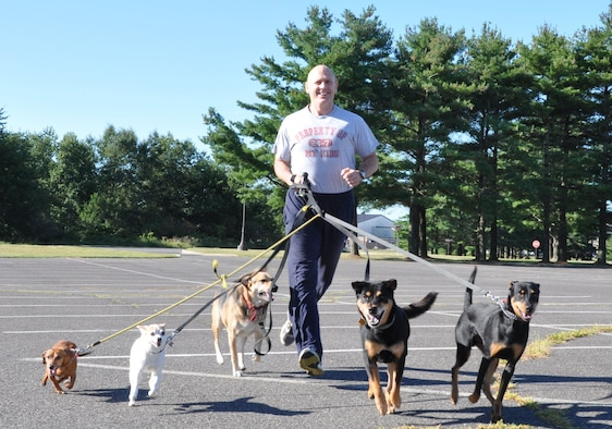 Lt. Col. Dean Owen, 514th Air Mobility Wing chief of wing safety, and his five dogs enjoy a leisurely run here Sept. 7. His brood of all rescue dogs can often be sighted running at various locations on base or local neighborhoods four times a week, drawing admirers and amazed spectators along the routes of their passages.(U.S. Air Force photo/Senior Airman Chelsea Smith).