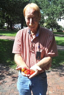 Savannah District team member William Lane displays a handful of the Moruga Trinidad Scorpion and the Butch-T Trinidad Scorpion—two of the hottest peppers in the world—that he grows at his home in Pembroke, Ga. USACE Photo by Tracy Robillard.