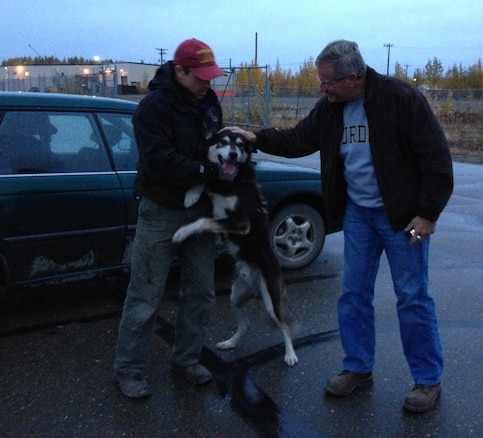 GALENA, Alaska – Jon Korta was reunited with the final five members of his sled team after spending an entire summer separated following a devastating flood. (U.S. Air Force photo)