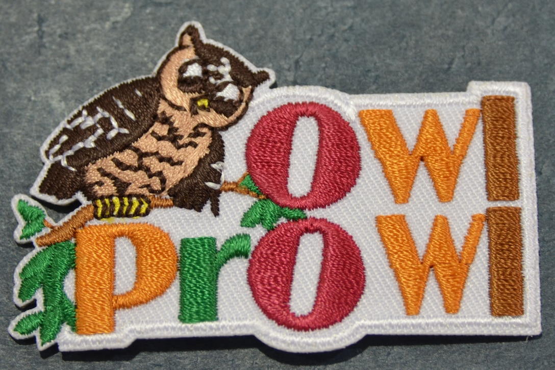 ALBUQUERQUE, N.M., -- The special Owl Prowl badge that the Scouts earned as a result of working on the Burrowing Owl project with the Corps and AMAFCA.