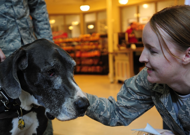 1st Lt. Shannon Andrews pets Grace, a great dane from the Miami Valley Pet Therapy Association, during a Beat Stress Seminar at the National Air and Space Intelligence Center at Wright-Patterson Air Force Base, Ohio, March 25. Therapy dogs like Grace are being used by an increasing number of agency units to help troops cope with the rigors of military life. (U.S. Air Force photo by SrA James Jacobs)