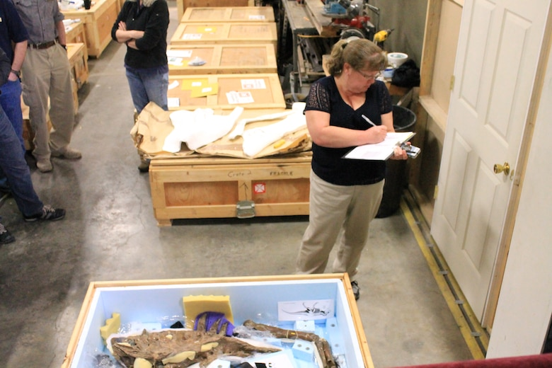 Physical Anthropologist, Cathy Van Arsdale from the Mandatory Center of Expertise for the Curation and Management of Archaeological Collections in the St. Louis District, documents the condition of the arm bone and upper jawbone of the Wankel T.rex. She notes the condition of each element, which will be rechecked upon the collection's arrival in Washington D.C. at the Smithsonian's National Museum of Natural History