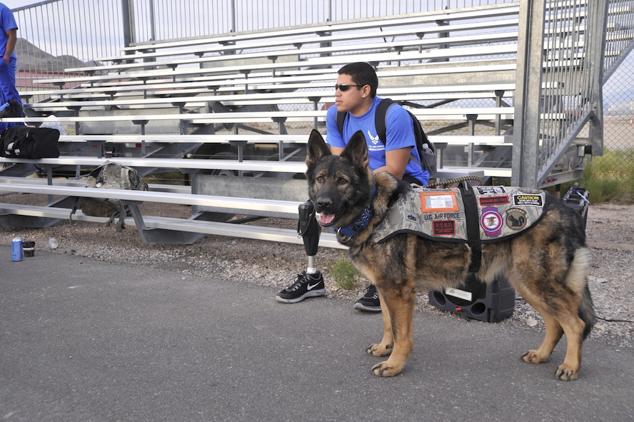Staff Sgt. Mark Johnson and service dog Bailey wait for the start of the cycling competition during the 2014 Wounded Warrior Air Force Trials at Nellis Air Force Base, Las Vegas, Nev., April 9, 2014. Active duty and retired Airmen competed in swimming, basketball, volleyball, track and filed events, archery and shooting competitions.(U.S. Air Force photo by Airman 1st Class Christian Clausen)