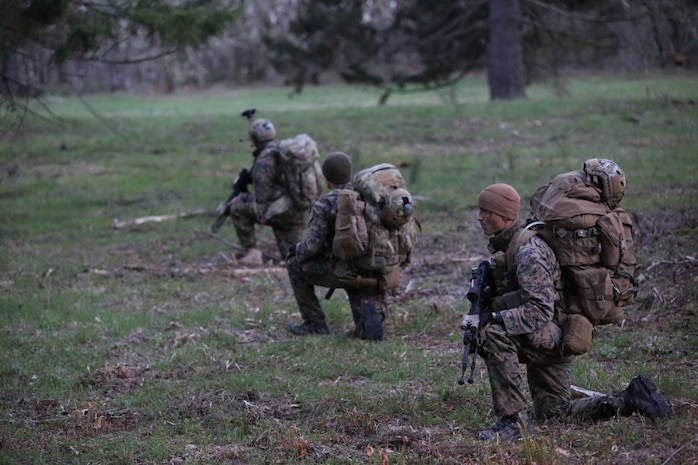 Marines from Bravo Company, 1st Reconnaissance Battalion, pause along a tree line to survey an open area of forest they must cross. The company conducted a 10-day training exercise aboard Fort Lewis-McChord, Wash., earlier this month.