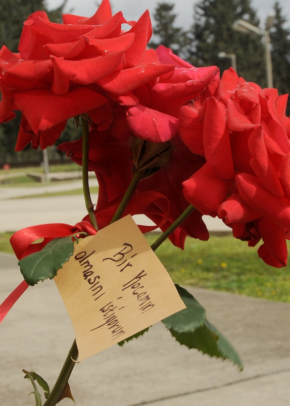 INCIRLIK AIR BASE, Turkey—A wish is tied to a rose bush with a red ribbon as part of the Turkish spring festival of Hidirellez, which is held on May 6, each year. According to Turkish culture, wishes are significant during this celebration because Hidir, also known as Hizir, is an immortal person believed to come in time of need. The importance of May 6, is it is believed Hizir and Prophet Elijah met on that day. (U.S. Air Force photo by SSgt Veronica Pierce/Released)