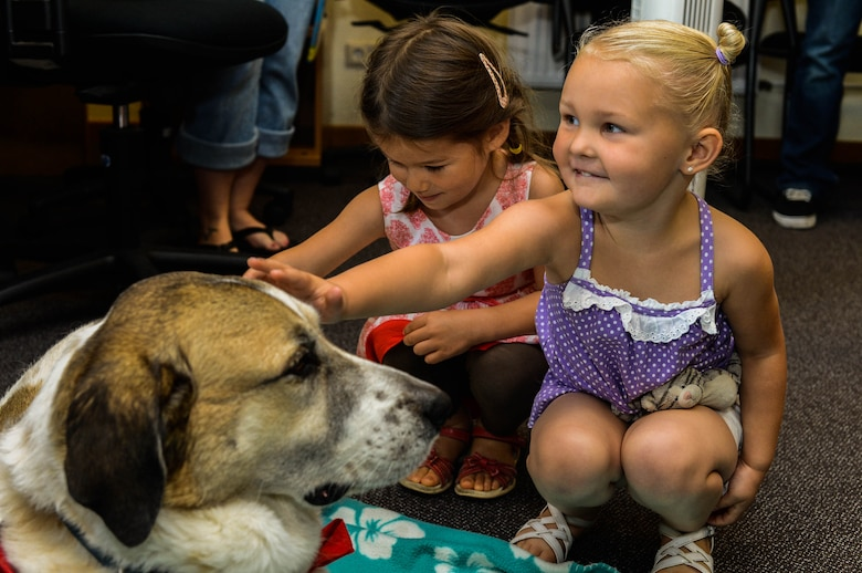 Lucia Padillabarg (left) and Natalie Tucker (right), stroke Rocky, a Red Cross Morale Dog, in the library at Spangdahlem Air Base, Germany, July 31, 2014. Rocky helps the Red Cross by meeting with people returning from deployments or with patients at hospitals. The Red Cross Dogs aim to reduce stress and increase morale. (U.S. Air Force photo by Airman 1st Class Kyle Gese/Released)