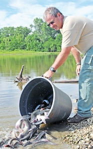 Tom Duckworth, fisheries and wildlife biologist, Conservation Branch, Environmental Division, DPW, pours channel catfish from a large bucket into a lake July 8 at Camp Funston.