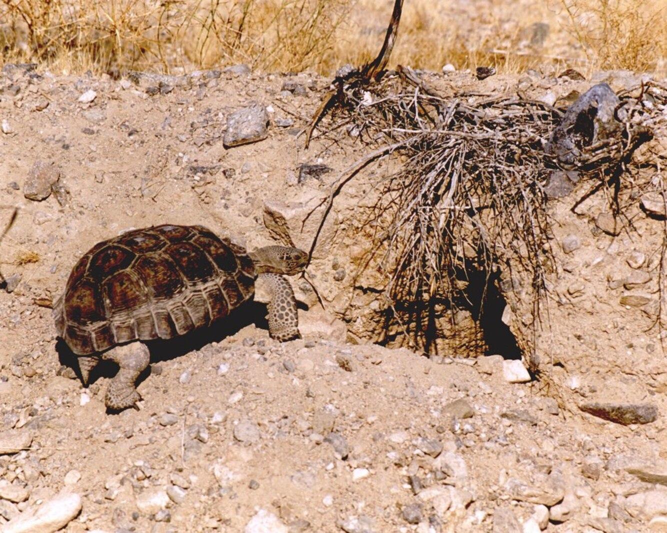 Environmental Operations Photo