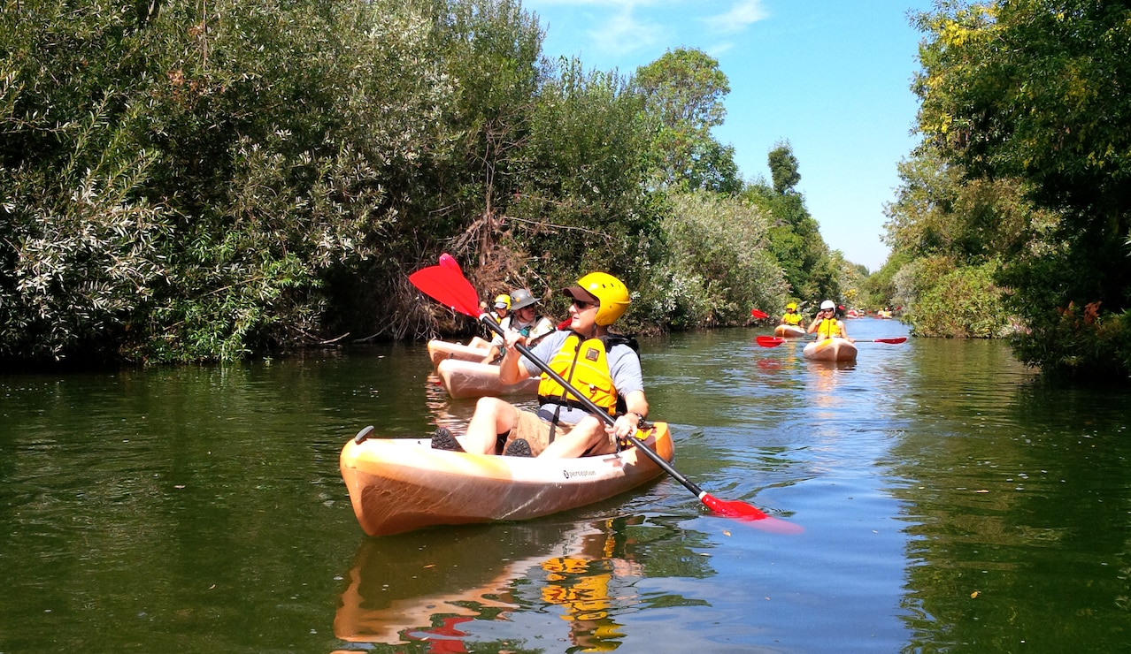 Kayakers paddle along the Los Angeles River in the Sepulveda Basin Aug. 25.