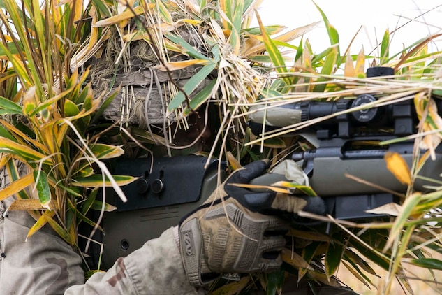 U.S. Marine Lance Cpl. Jonas G. Dewald demonstrates the effectiveness of a ghillie suit Dec. 2 in the Oyanohara Training Area in Yamato, Kumamoto prefecture, Japan. The concealment training was part of Forest Light 15-1, a semi-annual, bilateral exercise consisting of a command post exercise and field training events conducted by elements of III Marine Expeditionary Force and the Japan Ground Self-Defense Force to enhance the U.S. and Japan military partnership, solidify regional security agreements and improve individual and unit-level skills. Dewald, from Wilson, North Carolina, is a machine gunner with Weapons Company, 2nd Battalion, 9th Marine Regiment, currently attached to 4th Marine Regiment, 3rd Marine Division, III MEF, under the unit deployment program.