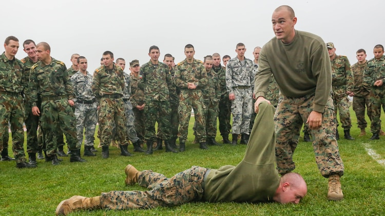 Marines demonstrate a non-lethal defensive maneuver used to fend off, overcome and subsequently detain aggressors during peacetime operations during exercise Platinum Wolf 15 at South Base, Serbia, Nov. 18. Platinum Wolf is a peacekeeping operations training exercise focused on non-lethal systems and basic infantry skills. Units train together as coalitions, developing and improving proficiency of peacekeeping procedures like crowd and riot control. Forces from Bulgaria, Croatia, Macedonia, Romania, Serbia and the U.S. will be participating in the two week training.