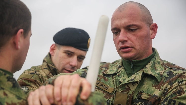A Serbian soldier, participating in the non-lethal systems training course of exercise Platinum Wolf 15, uses a training baton to thwart an assault from an aggressor, Nov. 18 at South Base, Serbia. The technique is used to quickly subdue an individual and maintain control of a situation during peacekeeping missions. Platinum Wolf is a peacekeeping operations training-exercise focused on non-lethal systems and basic infantry skills. Units train together as coalitions, developing and improving proficiency of peacekeeping procedures like crowd and riot control. Forces from Bulgaria, Croatia, Macedonia, Romania, Serbia and the U.S. will be participating in the  two week training.