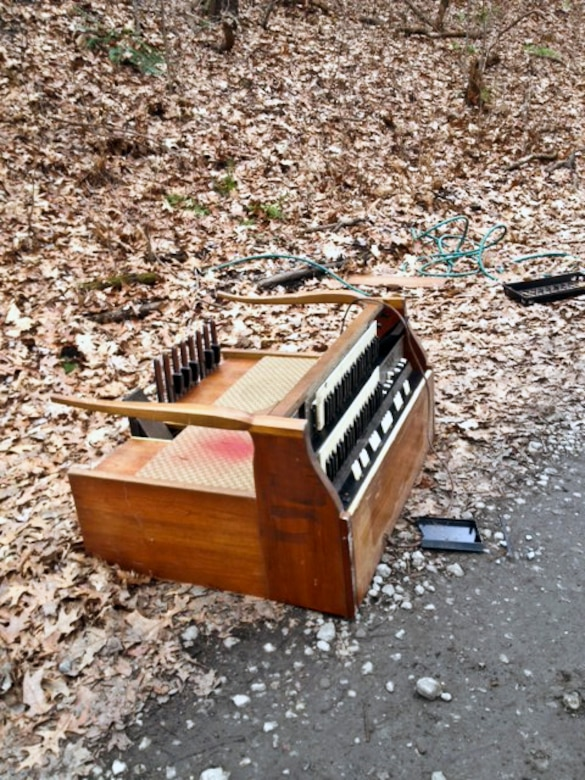 A 'Dump and Run' organ was found along a remote roadway.