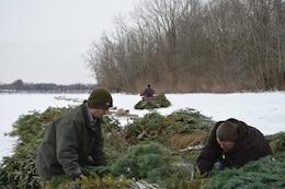 Don't send your live-cut Christmas tree to the trash after the holidays. Donate it to the Christmas Tree Recycling Program sponsored by the U.S. Army Corps of Engineers at Youghiogheny River Lake.  In January 2014, Rangers Matthew Pook, Steve Rutkowski, and Student Matt Blake, partnered with Ohio Department of Natural Resources (ODNR) to place recycled Christmas trees on the lakeshore. The trees were recyled into fish habitats.