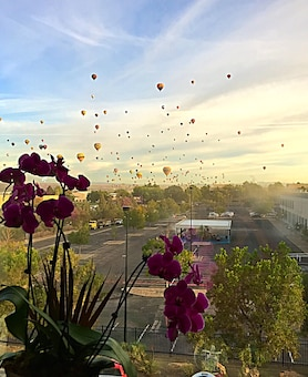"2014 District Photo Drive entry. Photo by Lisa Lopez, Oct. 7, 2014. ""View of the 2014 Albuquerque International Balloon Fiesta from the photographer's cubicle on the third floor of the District Office in Albuquerque, N.M."""